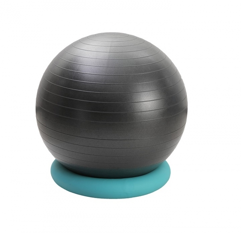 BB008 - Balance Ball With Ring